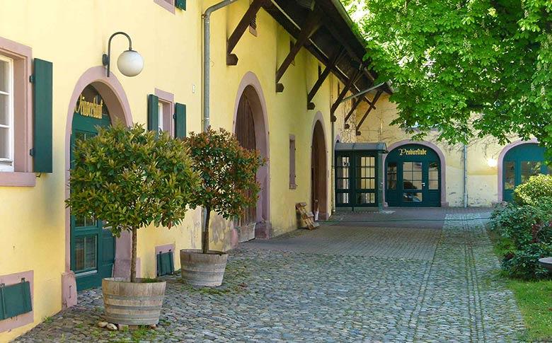 715 Jahre Erfahrung: Stiftungsweingut Freiburg